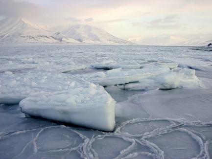 Lód morski w Longyearbyen. Fot. J. Małecki