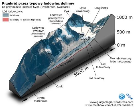 Przekrój przez typowy lodowiec dolinny na przykładzie lodowca Sven (Svenbreen, Svalbard). Sytuacja śnieżna odpowiada końcu lata.