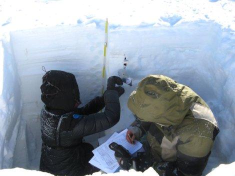 Pomiary gęstości śniegu w szurfie. Fot. J. Małecki