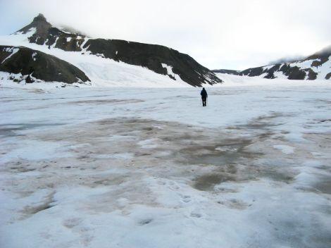 Płaty ciemnego śniegu na lodowcu Sven, Svalbard. Fot. J. Małecki