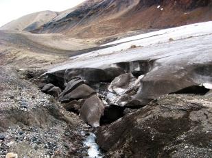 Gdyby przekroić w poprzek jęzor typowego lodowca dolinnego okazałoby się, że ma on kształt wypukły. Dlatego też, woda często kierowana jest do bocznych sektorów jęzora i płynie tuż przy bocznej morenie. Zdjęcie przedstawia kanał odwadniający lodowiec Sven. Płynąca z impetem woda podcina brzegi lodowca, co skutkuje odłamywaniem się od niego wielkich brył lodu. //Lateral channel of Sven glacier (Svenbreen). Undercutting causes dry calving of ice blocks. Fot. Jakub Małecki, 2014//