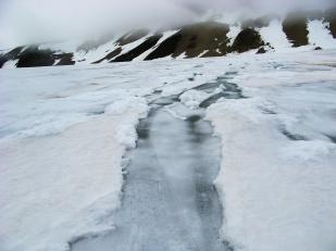 Supraglacjalne procesy hydrologiczne rozpoczynają się na dobre na początku lata, kiedy zimowy śnieg zaczyna topnieć. Początkowo woda roztopowa gromadzona jest w śniegu, a w momencie, gdy ten jest już przesycony wodą rozpoczyna się jej spływ w dół stoku. Na fotografii przedstawiono przesycony wodą śnieg (tzw. slush, czyli papkę śnieżno-wodną) na lodowcu Sven. Wyraźnie widoczny spływ wody w dół stoku. Widać również początkową fazę organizacji spływu w koryta. // Water-saturated snow on Sven glacier (Svenbreen). Fot. Jakub Małecki, 2011//
