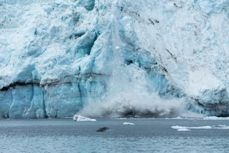 Cielenie lodowca Margerie, Glacier Bay National Park, Alaska. Fot. M. Byzewski, Flickr, CC-BY