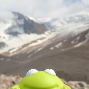 Żaba mojego synka podróżuje ze mną po całym świecie. / My son's frog travels around the world with me. Fot. JM